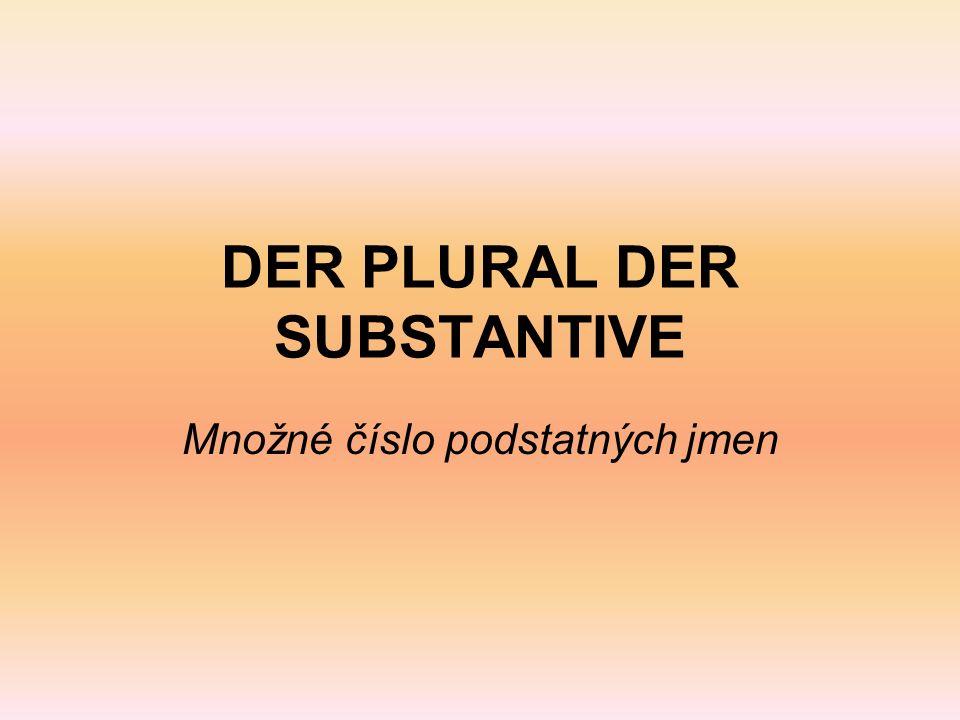 DER PLURAL DER SUBSTANTIVE Množné číslo podstatných jmen