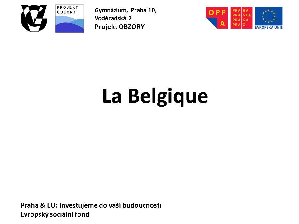 La Belgique Praha & EU: Investujeme do vaší budoucnosti Evropský sociální fond Gymnázium, Praha 10, Voděradská 2 Projekt OBZORY