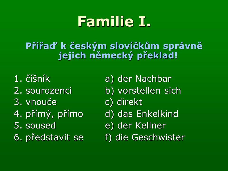Familie I. Správné řešení : 1.e) 2.f) 3.d) 4.c) 5.a) 6.b)