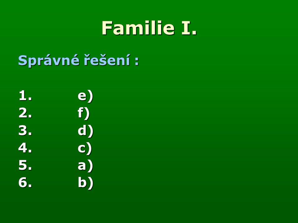 Familie I.1. Zkontroluj správnost koncovek. 2. Jednotlivá slovesa přelož.