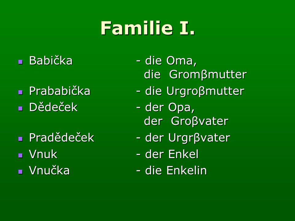 Familie I.Přelož slovesa v závorkách do němčiny: 1.Er (pracuje) in der Schule.