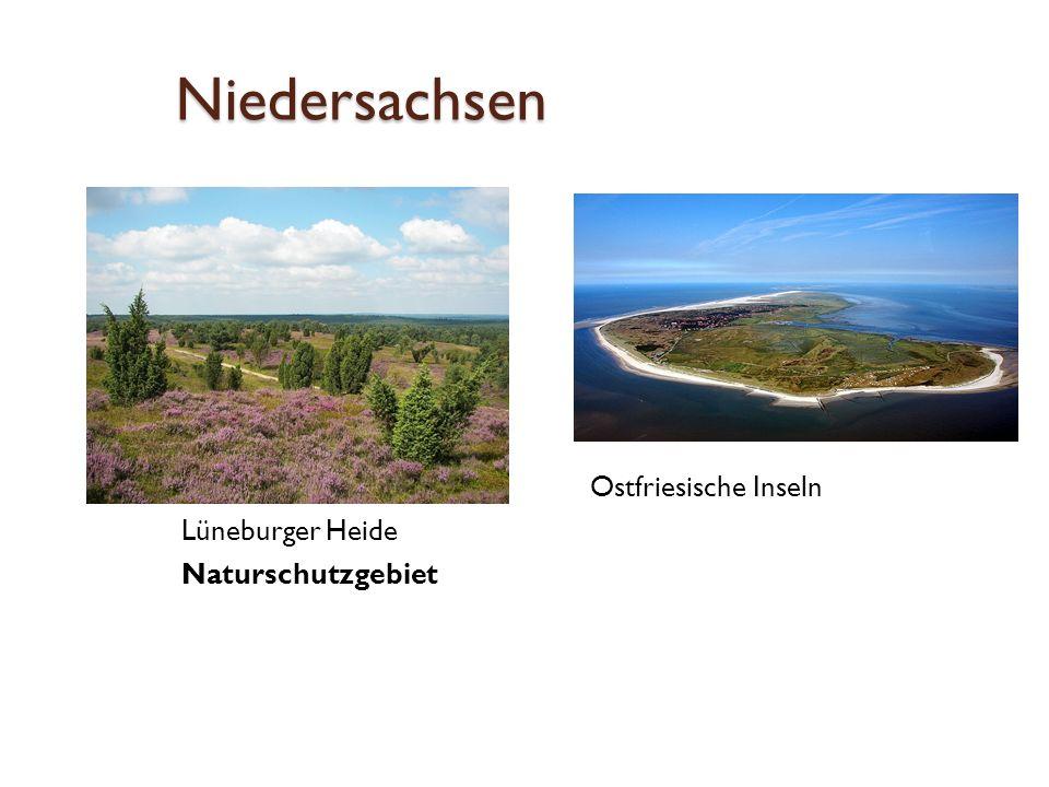 Niedersachsen  Ostfriesische Inseln Lüneburger Heide Naturschutzgebiet