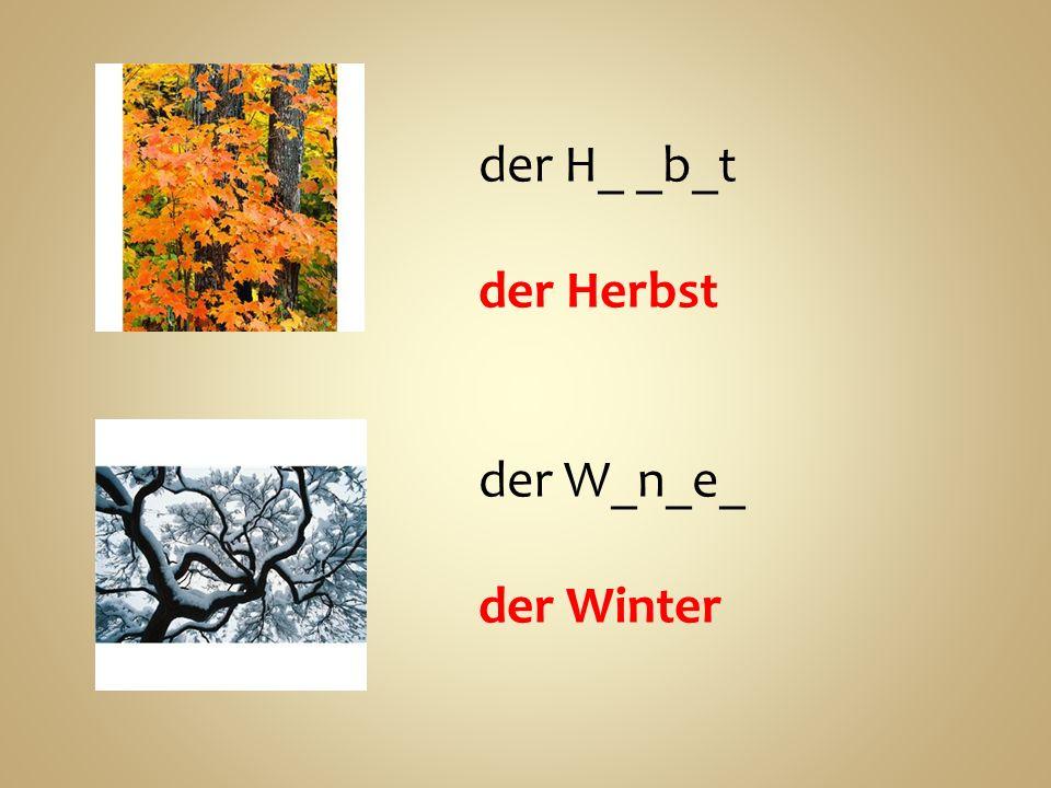 der H_ _b_t der Herbst der W_n_e_ der Winter