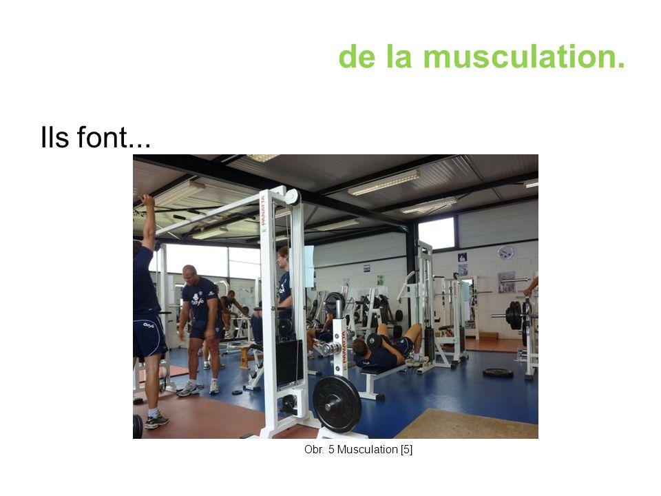 de la musculation. Ils font... Obr. 5 Musculation [5]