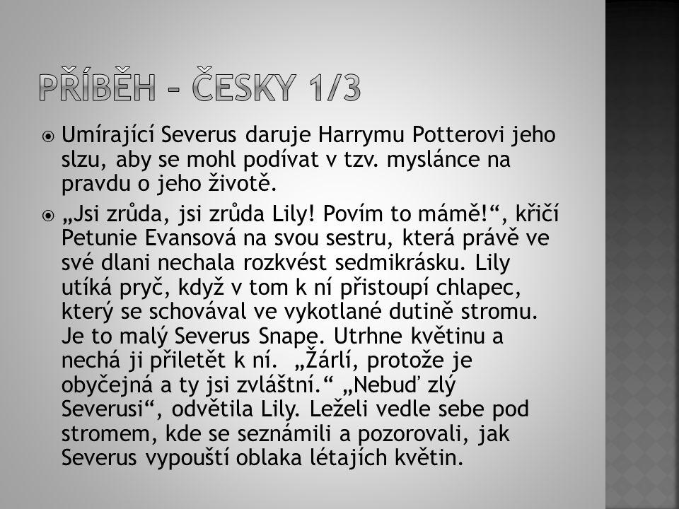 """ Umírající Severus daruje Harrymu Potterovi jeho slzu, aby se mohl podívat v tzv. myslánce na pravdu o jeho životě.  """"Jsi zrůda, jsi zrůda Lily! Pov"""