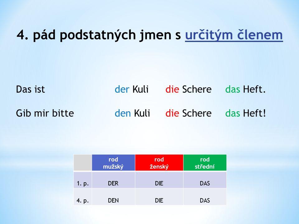 4.pád podstatných jmen s určitým členem Gib mir bitte den Füller.