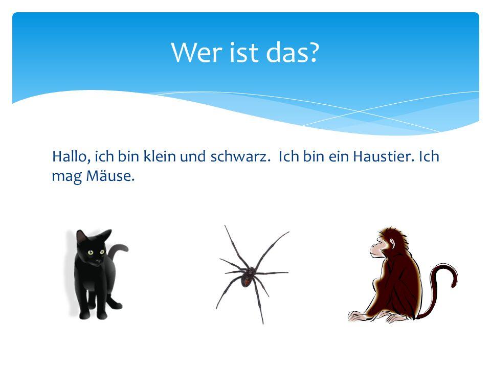 Hallo, ich bin klein und schwarz. Ich bin ein Haustier. Ich mag Mäuse. Wer ist das?