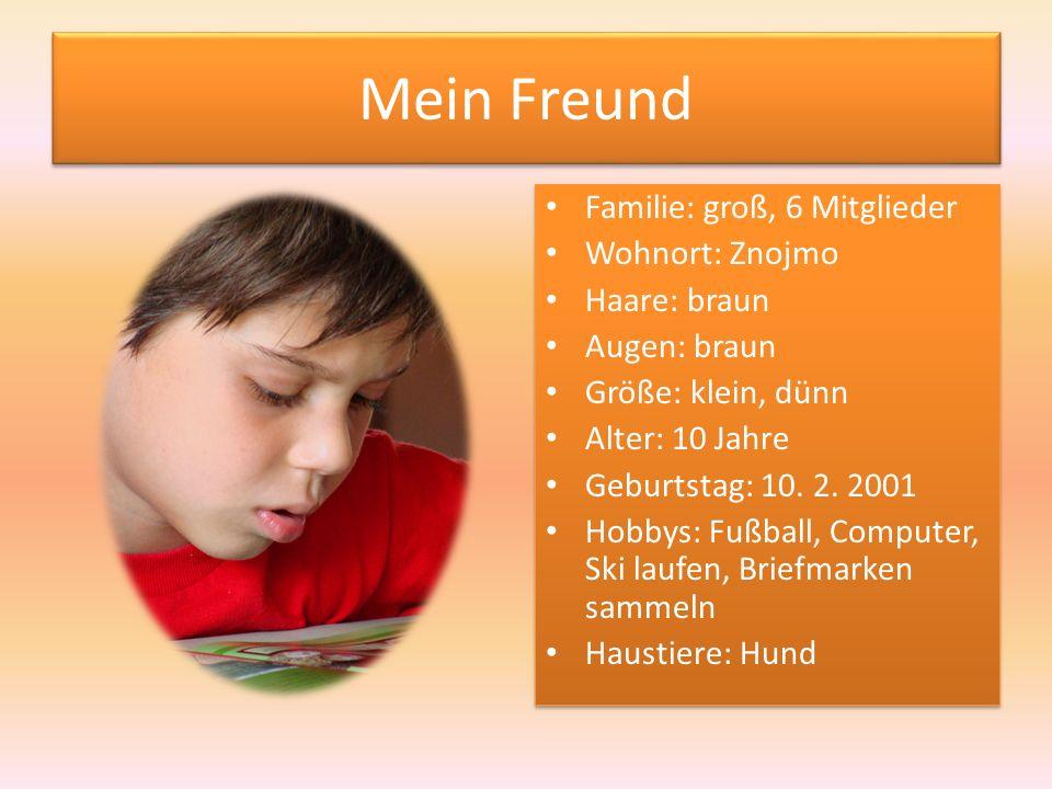 Mein Freund Familie: groß, 6 Mitglieder Wohnort: Znojmo Haare: braun Augen: braun Größe: klein, dünn Alter: 10 Jahre Geburtstag: 10.