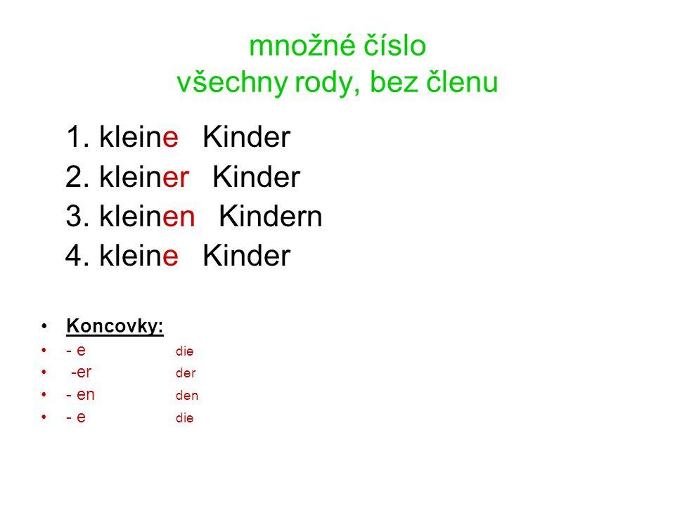 množné číslo všechny rody, bez členu 1. kleine Kinder 2.
