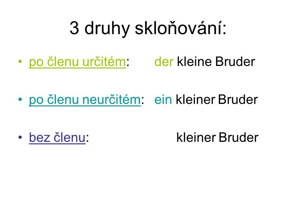 3 druhy skloňování: po členu určitém: der kleine Bruder po členu neurčitém: ein kleiner Bruder bez členu: kleiner Bruder