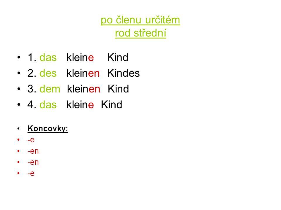 po členu určitém rod střední 1. das kleine Kind 2.