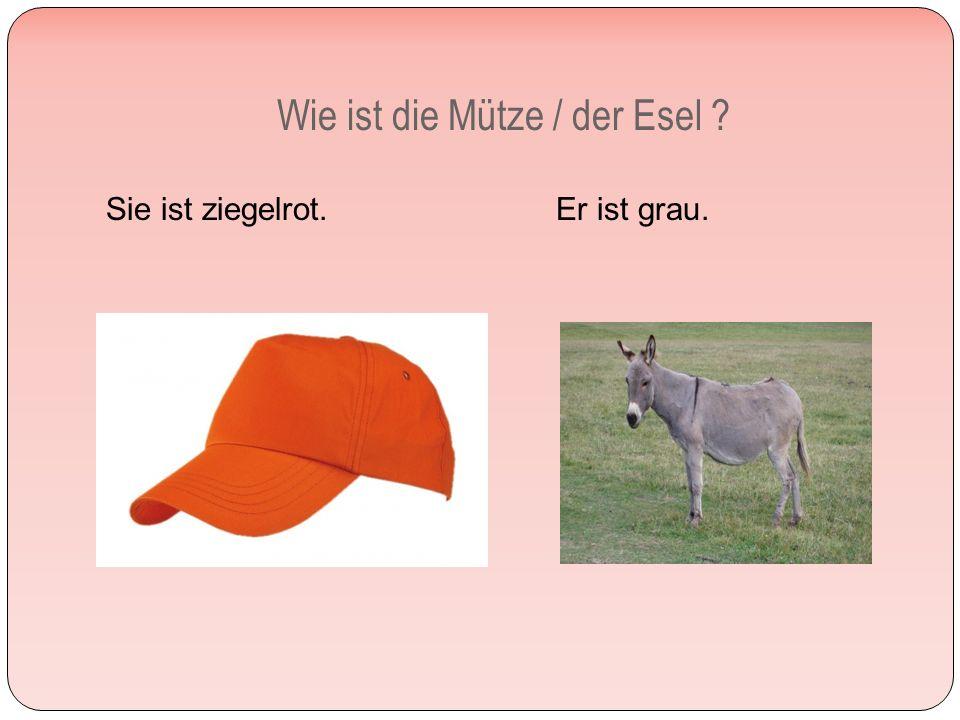 Wie ist die Mütze / der Esel Sie ist ziegelrot. Er ist grau.