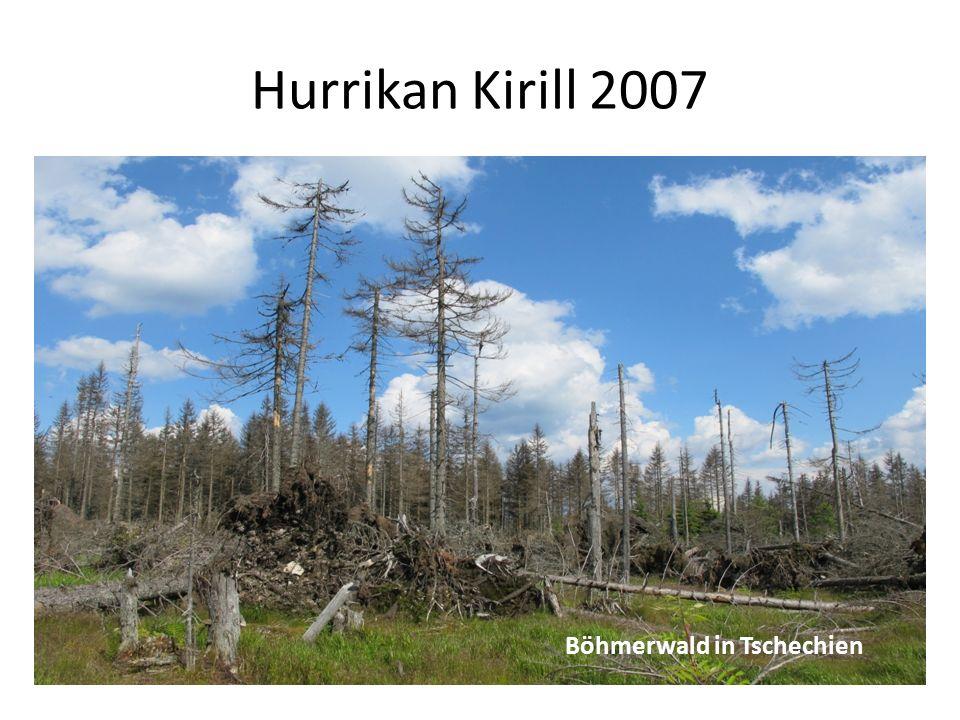 Hurrikan Kirill 2007 uu Böhmerwald in Tschechien