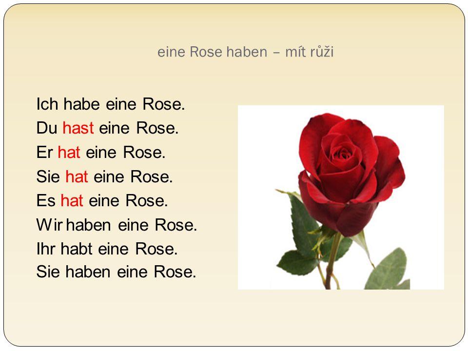 eine Rose haben – mít růži Ich habe eine Rose. Du hast eine Rose. Er hat eine Rose. Sie hat eine Rose. Es hat eine Rose. Wir haben eine Rose. Ihr habt