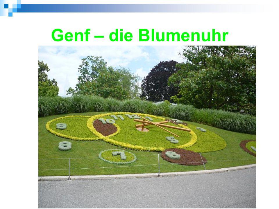 """Genf – Fontäne/Springbrunnen (""""Wasserstrahl - bis zu 140 m hoch)"""