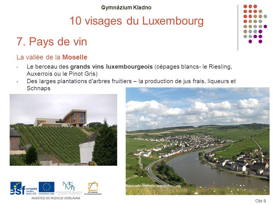 Gymnázium Kladno 10 visages du Luxembourg 7. Pays de vin La vallée de la Moselle Le berceau des grands vins luxembourgeois (cépages blancs- le Rieslin