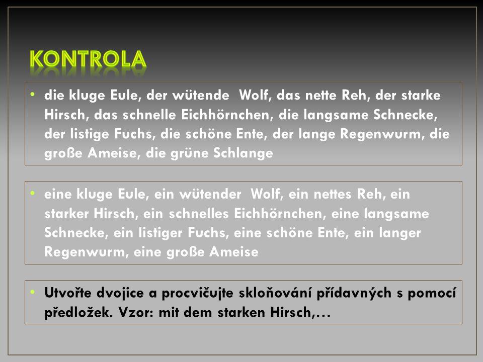 die klug__ Eule, der wütend___ Wolf, das nett__ Reh, der stark___ Hirsch, Das schnell___ Eichhörnchen, die langsam___ Schnecke, der listig___ Fuchs, Die schön___ Ente, der lang___ Regenwurm, die groß___ Ameise, die grün__ Schlange 1.doplň správně tvar přídavného jména 2.člen určitý změň na člen neurčitý a opět doplň správný tvar přídavného jména