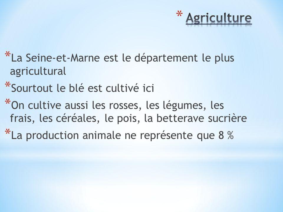 * La Seine-et-Marne est le département le plus agricultural * Sourtout le blé est cultivé ici * On cultive aussi les rosses, les légumes, les frais, les céréales, le pois, la betterave sucrière * La production animale ne représente que 8 %