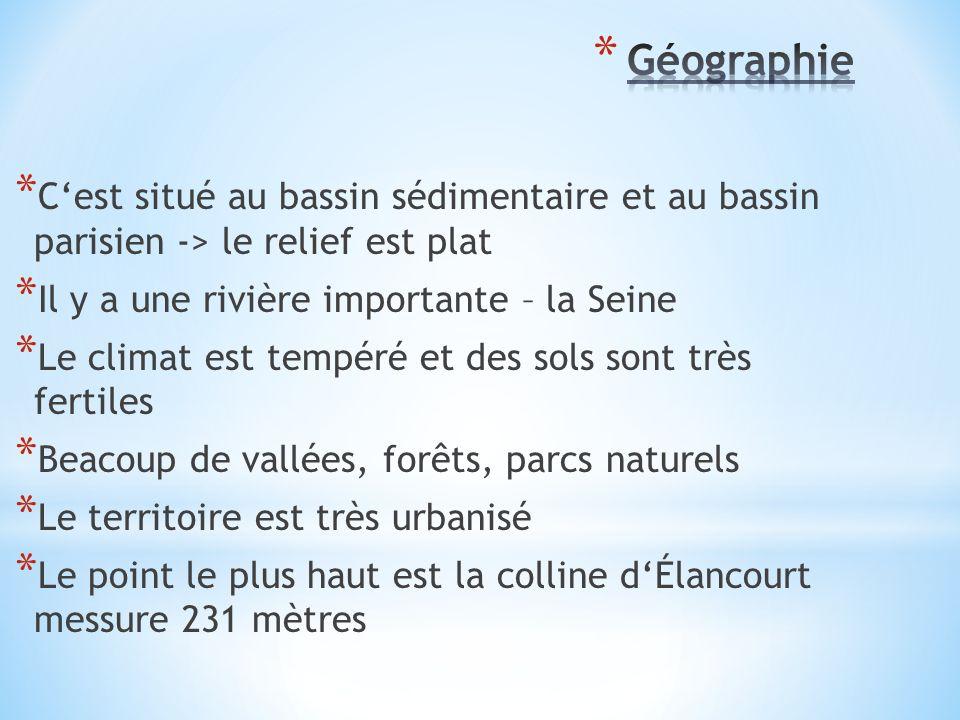 * C'est situé au bassin sédimentaire et au bassin parisien -> le relief est plat * Il y a une rivière importante – la Seine * Le climat est tempéré et des sols sont très fertiles * Beacoup de vallées, forêts, parcs naturels * Le territoire est très urbanisé * Le point le plus haut est la colline d'Élancourt messure 231 mètres