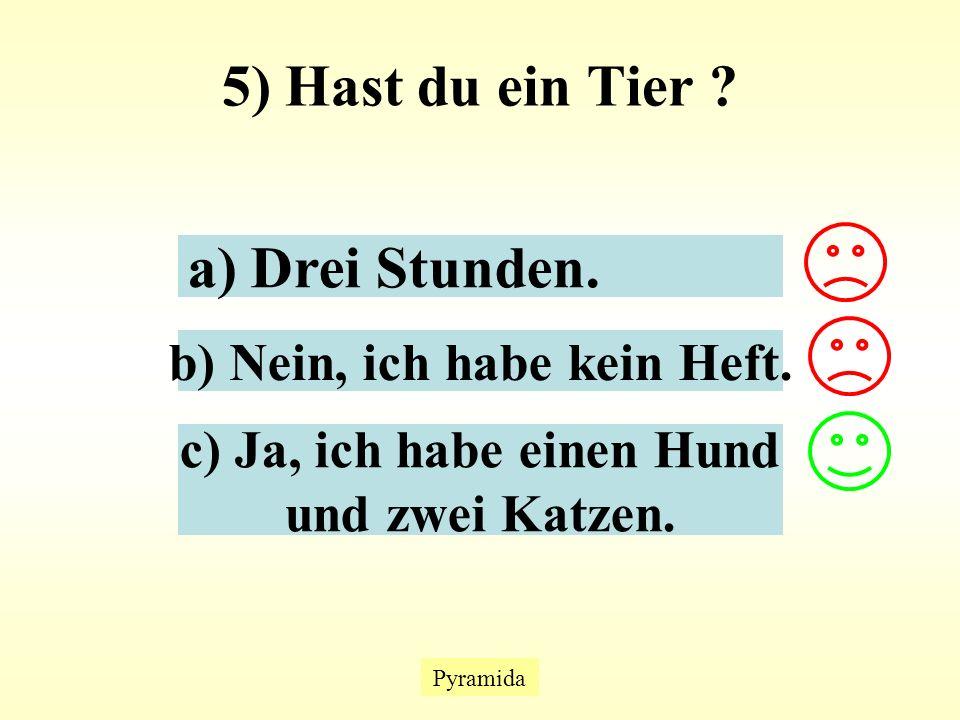 5) Hast du ein Tier . Pyramida a) Drei Stunden. b) Nein, ich habe kein Heft.