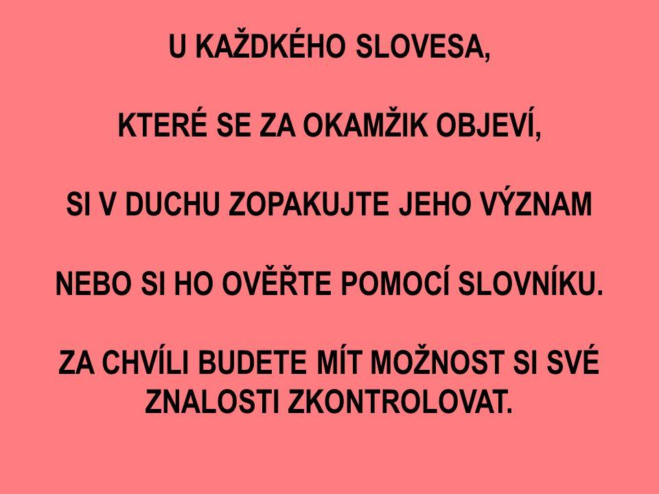 1. slovesná třída2. slovesná třída3.