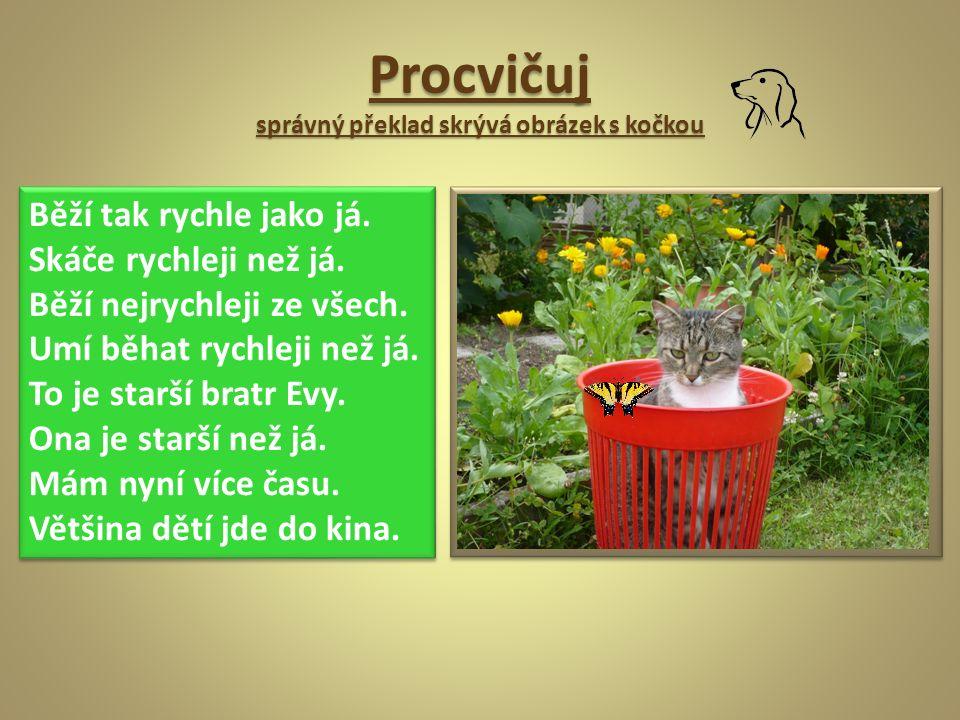 Procvičuj správný překlad skrývá obrázek s kočkou Běží tak rychle jako já.