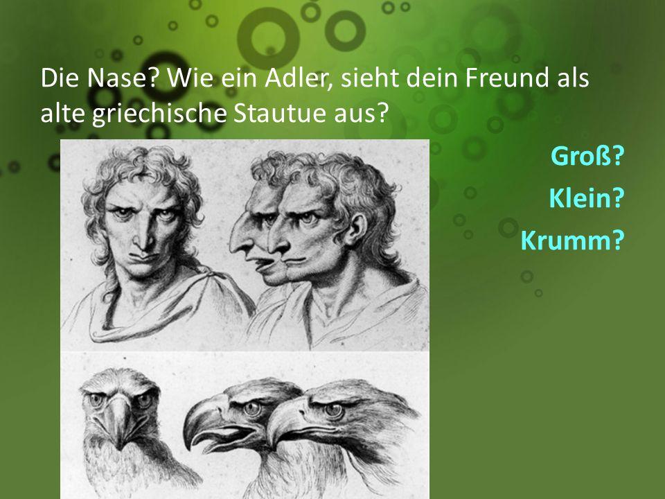 Die Nase? Wie ein Adler, sieht dein Freund als alte griechische Stautue aus? Groß? Klein? Krumm?