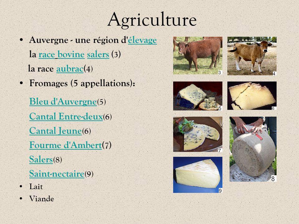 Agriculture Auvergne - une région d'élevage élevage la race bovine salers ( 3 )racebovinesalers la race aubrac( 4)aubrac Fromages (5 appellations): Bl