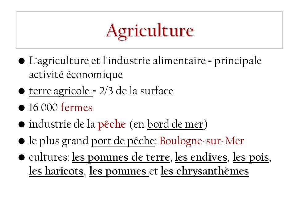 L'agriculture et l industrie alimentaire = principale activité économique terre agricole = 2/3 de la surface 16 000 fermes industrie de la pêche (en bord de mer) le plus grand port de pêche: Boulogne-sur-Mer cultures: les pommes de terre, les endives, les pois, les haricots, les pommes et les chrysanthèmes