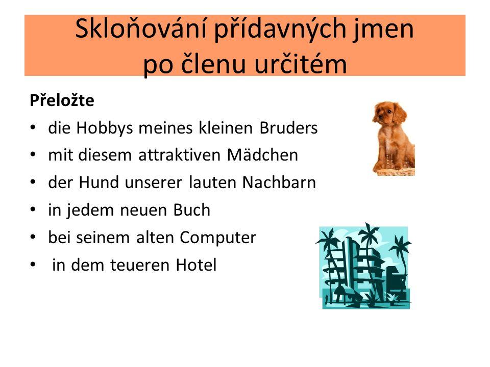 Skloňování přídavných jmen po členu určitém Přeložte die Hobbys meines kleinen Bruders mit diesem attraktiven Mädchen der Hund unserer lauten Nachbarn in jedem neuen Buch bei seinem alten Computer in dem teueren Hotel