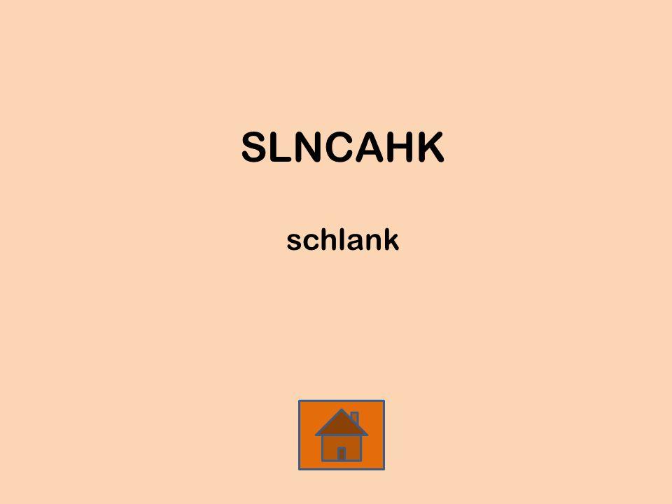 SLNCAHK schlank