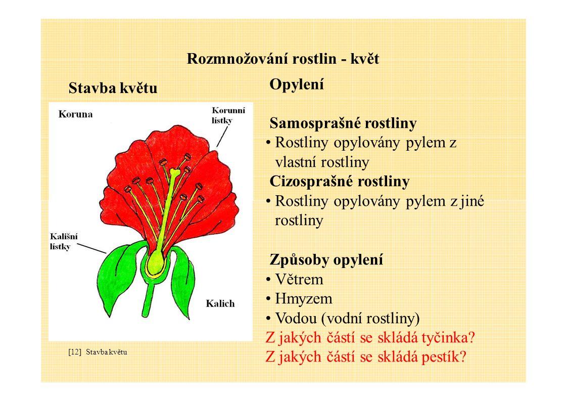 Rozmnožování rostlin - květ Stavba květu Opylení Samosprašné rostliny Rostliny opylovány pylem z vlastní rostliny Cizosprašné rostliny Rostliny opylov