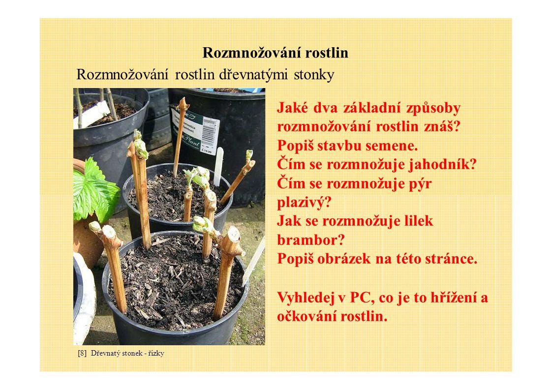 Rozmnožování rostlin Rozmnožování rostlin dřevnatými stonky [8] Dřevnatý stonek - řízky Jaké dva základní způsoby rozmnožování rostlin znáš? Popiš sta