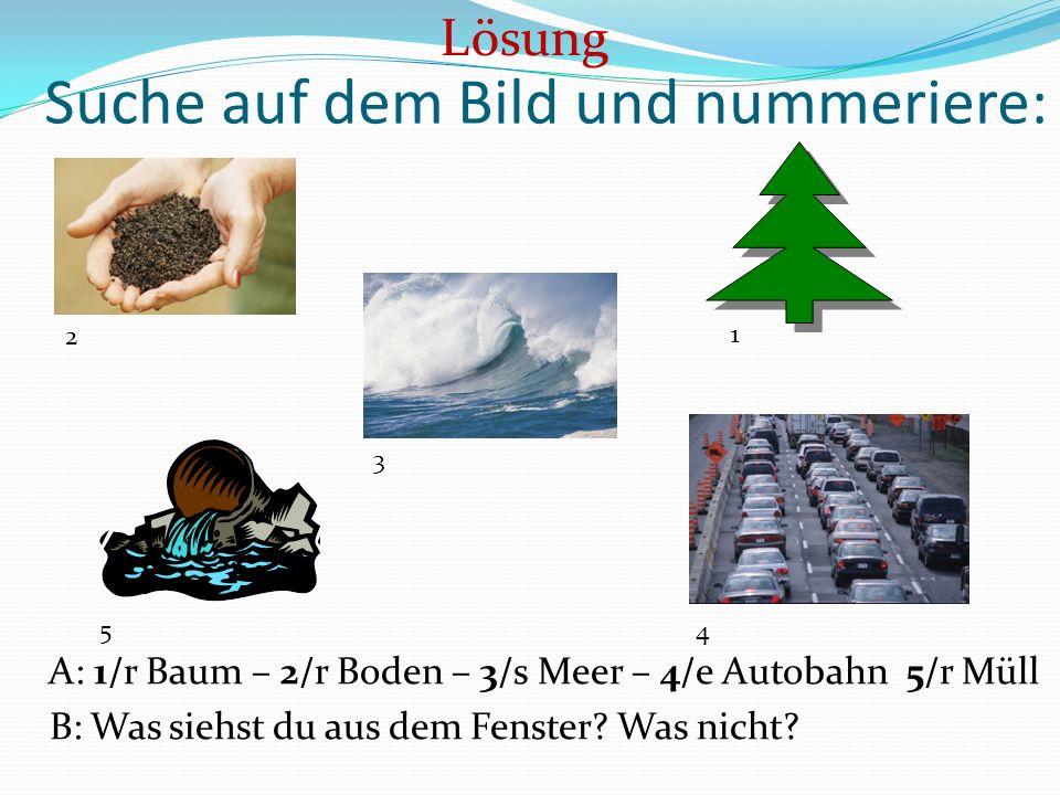 Suche auf dem Bild und nummeriere: A: 1/r Baum – 2/r Boden – 3/s Meer – 4/e Autobahn 5/r Müll B: Was siehst du aus dem Fenster? Was nicht? Lösung 2 3