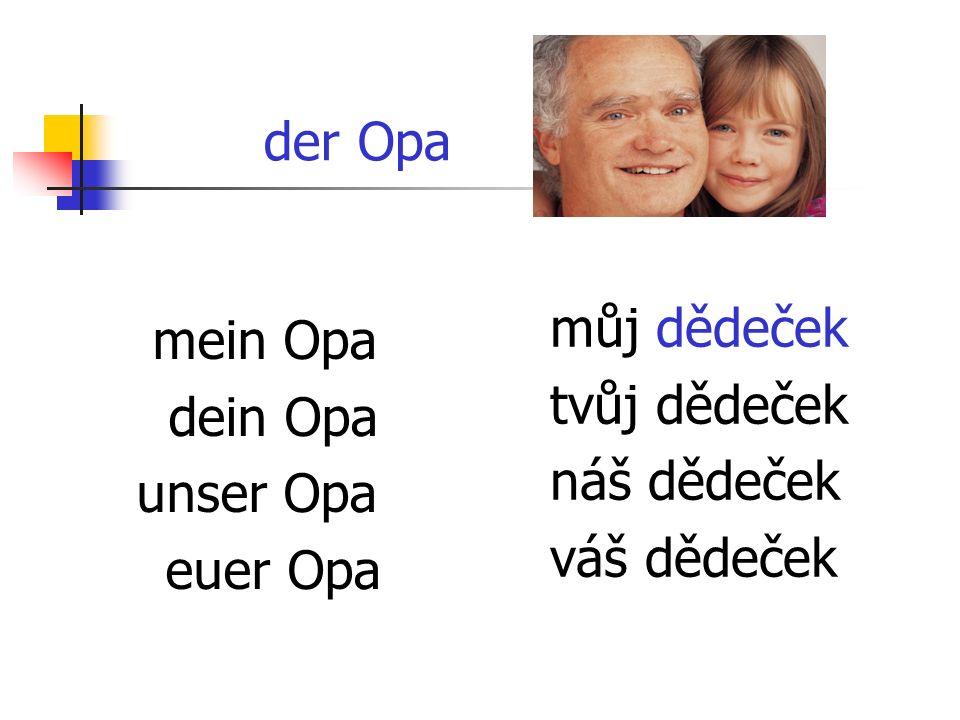 der Opa mein Opa dein Opa unser Opa euer Opa můj dědeček tvůj dědeček náš dědeček váš dědeček