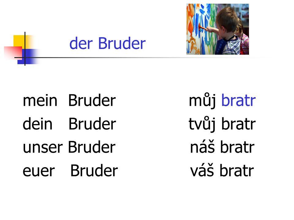 der Bruder mein Bruder dein Bruder unser Bruder euer Bruder můj bratr tvůj bratr náš bratr váš bratr