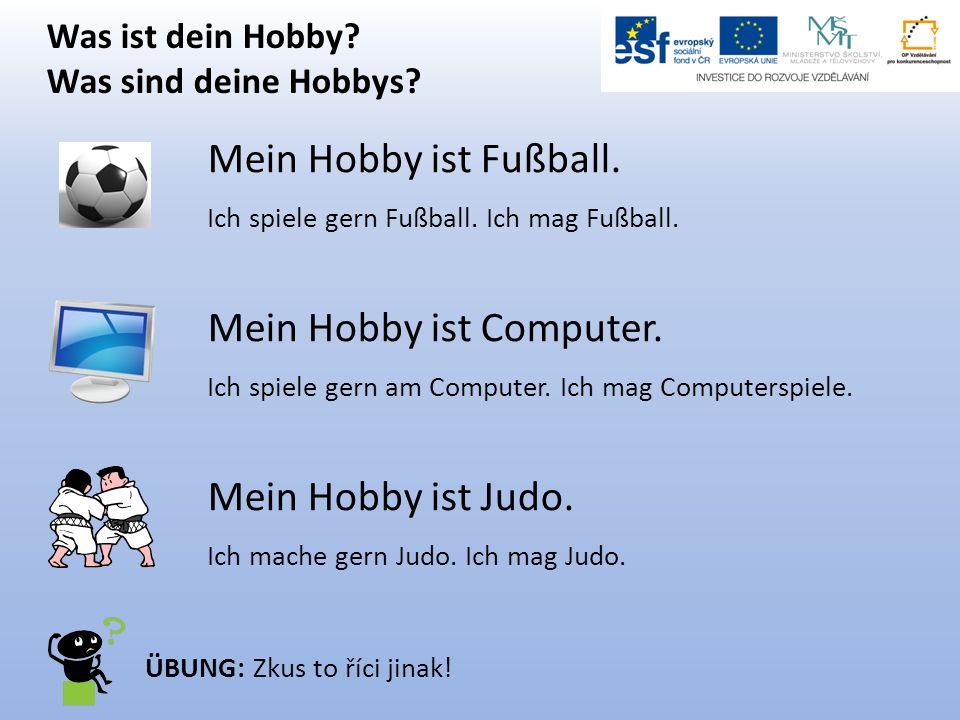 Was ist dein Hobby? Was sind deine Hobbys? Mein Hobby ist Fußball. Ich spiele gern Fußball. Ich mag Fußball. Mein Hobby ist Computer. Ich spiele gern