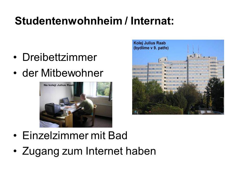 Studentenwohnheim / Internat: Dreibettzimmer der Mitbewohner Einzelzimmer mit Bad Zugang zum Internet haben
