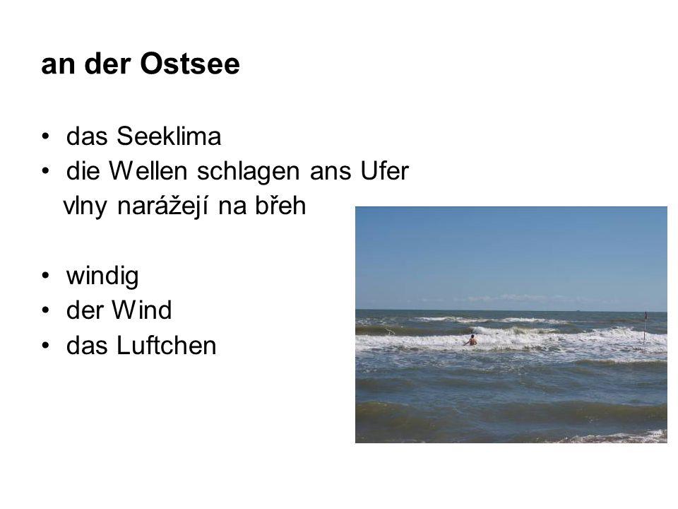 an der Ostsee das Seeklima die Wellen schlagen ans Ufer vlny narážejí na břeh windig der Wind das Luftchen