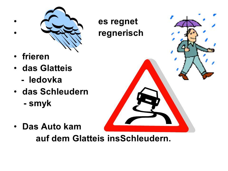 es regnet regnerisch frieren das Glatteis - ledovka das Schleudern - smyk Das Auto kam auf dem Glatteis insSchleudern.