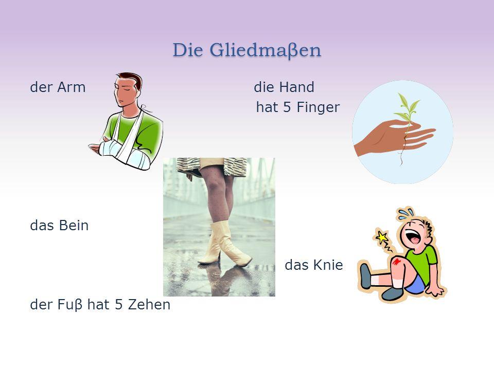 Die Gliedmaβen der Arm die Hand hat 5 Finger das Bein das Knie der Fuβ hat 5 Zehen
