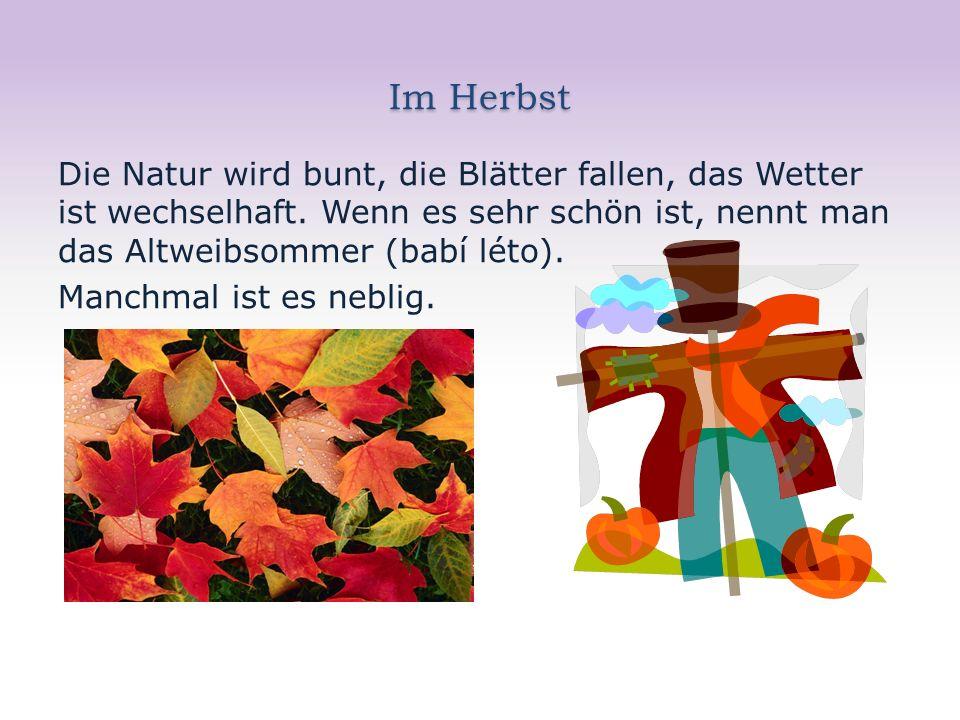 Im Herbst Die Natur wird bunt, die Blätter fallen, das Wetter ist wechselhaft.