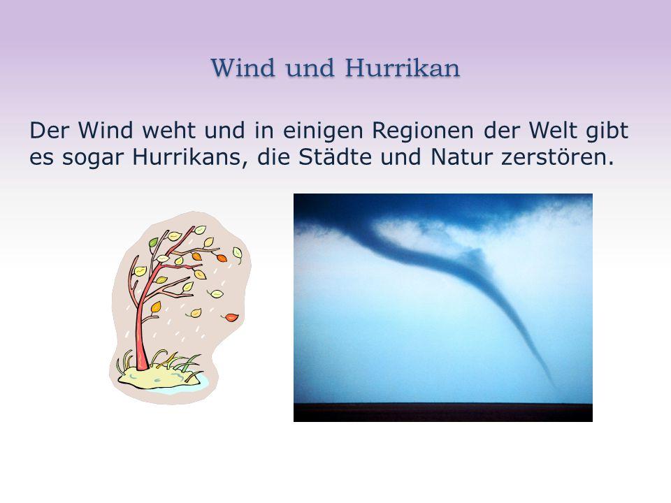 Wind und Hurrikan Der Wind weht und in einigen Regionen der Welt gibt es sogar Hurrikans, die Städte und Natur zerstören.
