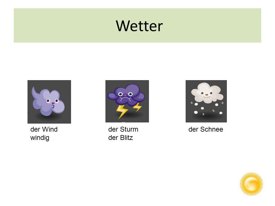 Wetter der Schneeder Sturm der Blitz der Wind windig