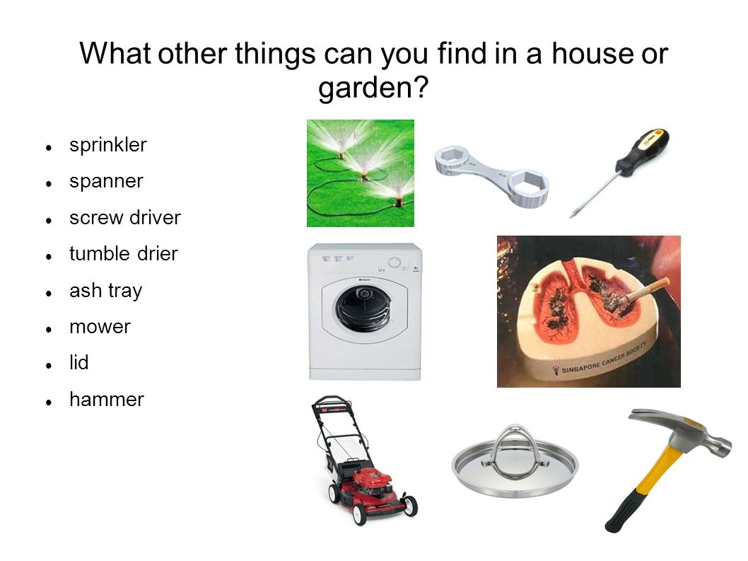 What other things can you find in a house or garden.