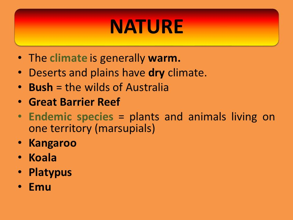 The climate is generally warm. Deserts and plains have dry climate. Bush = the wilds of Australia Great Barrier Reef Endemic species = plants and anim