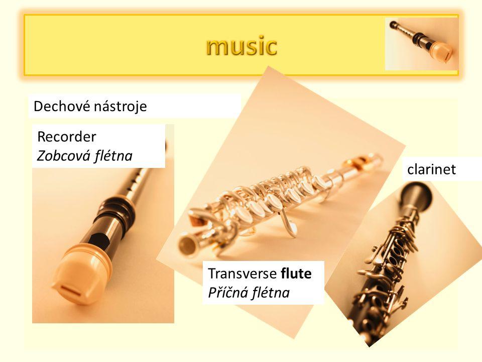 Strunné nástroje violine guitar