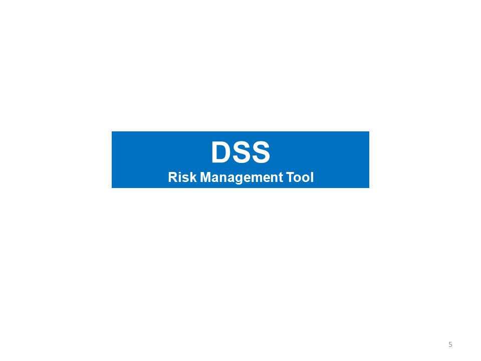 DSS Risk Management Tool 5