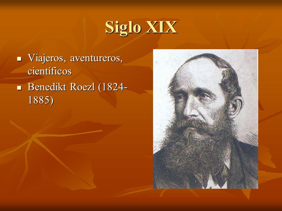 Siglo XIX Viajeros, aventureros, científicos Viajeros, aventureros, científicos Benedikt Roezl (1824- 1885) Benedikt Roezl (1824- 1885)