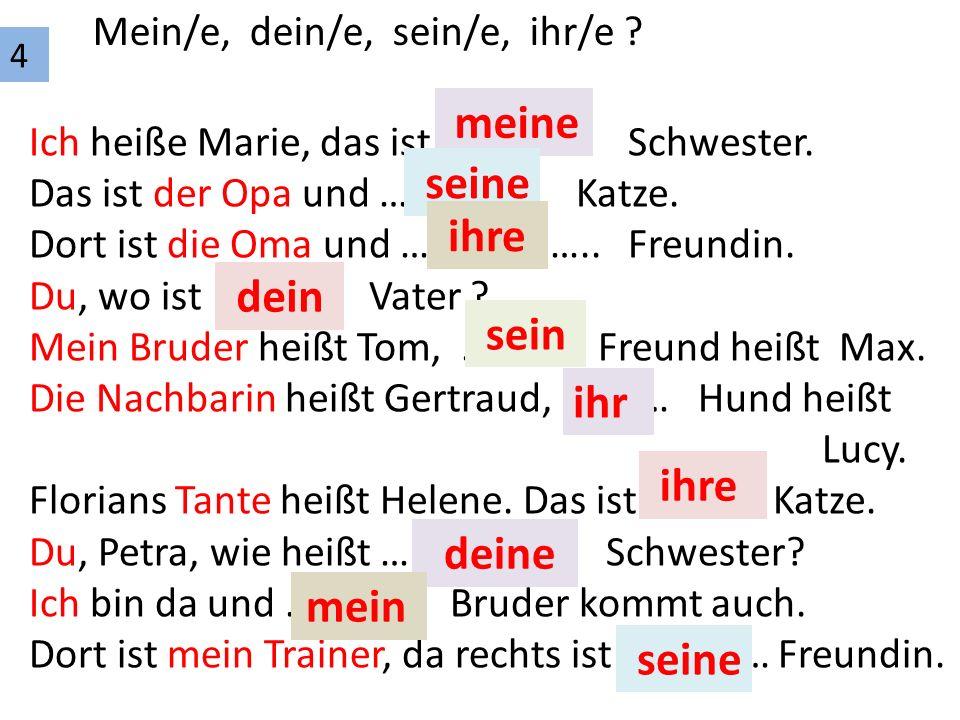 4 Mein/e, dein/e, sein/e, ihr/e . Ich heiße Marie, das ist …………..